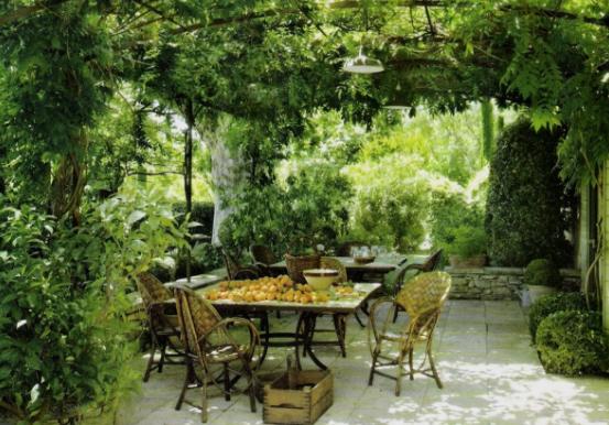 vine covered arbor